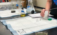 Science Day: Bailey Eshelman's Capstone
