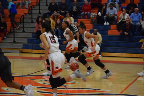 Lady Blaze Basketball v. Smyrna Bulldogs