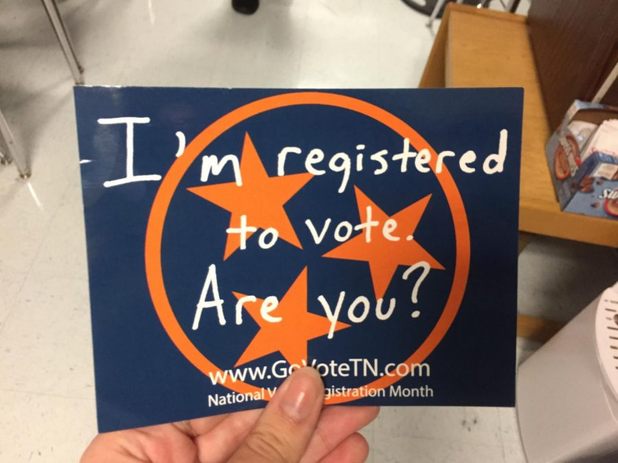 Voter Registration image