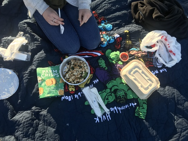 You can also take a picnic to the park.  Just take takeout, a blanket, and find an area in the park to set up your picnic with a friend.